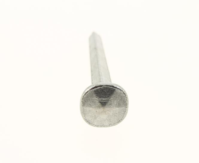 Torbandnagel 6-schlägiger Kopf geschmiedeter blank (100 Stück)