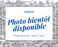 Pointe laiton nickelé Tête plate Ø 1.5mm (1 kg)